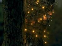 meter 12 lyskilder led stk 80 lyskæde david sirius